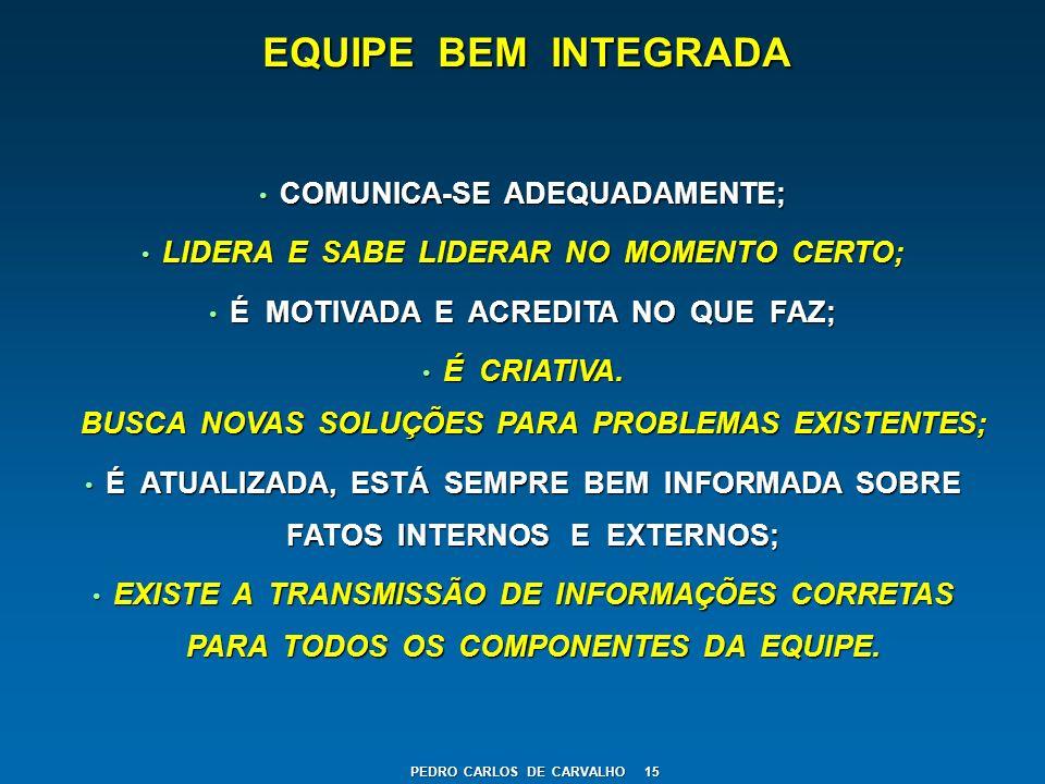 EQUIPE BEM INTEGRADA COMUNICA-SE ADEQUADAMENTE; COMUNICA-SE ADEQUADAMENTE; LIDERA E SABE LIDERAR NO MOMENTO CERTO; LIDERA E SABE LIDERAR NO MOMENTO CE