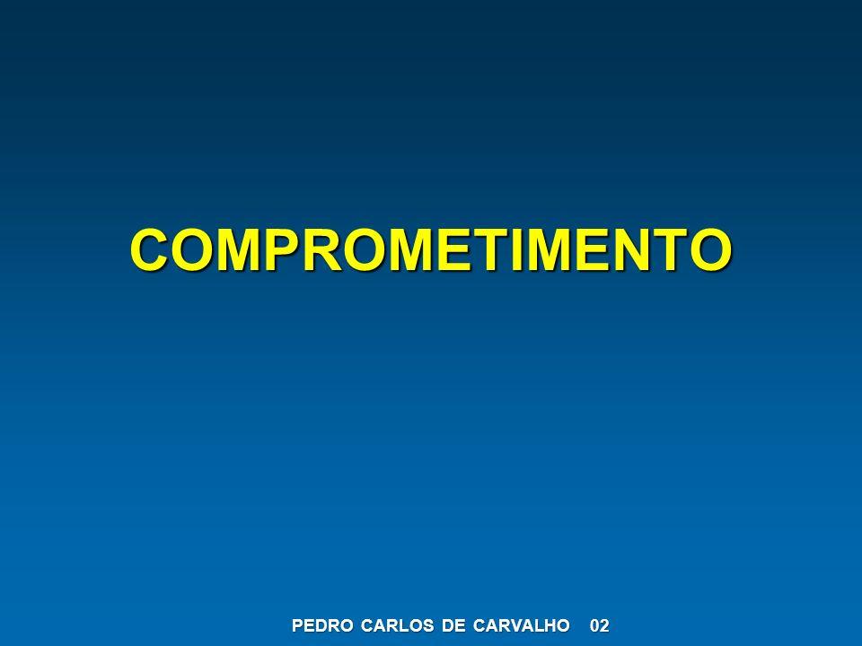 COMPROMETIMENTO PEDRO CARLOS DE CARVALHO 02