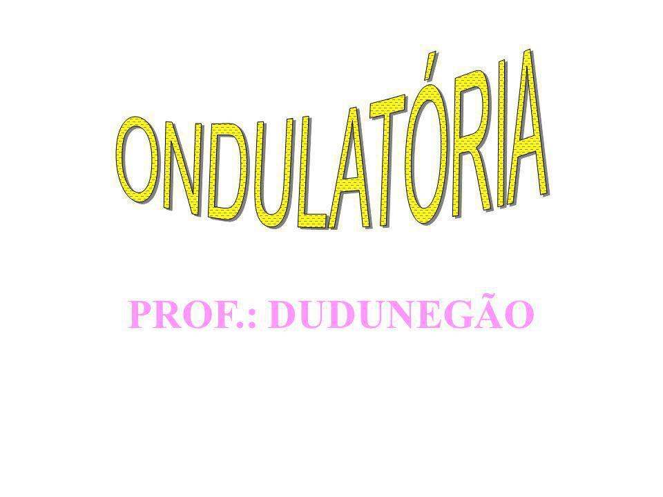 PROF.: DUDUNEGÃO