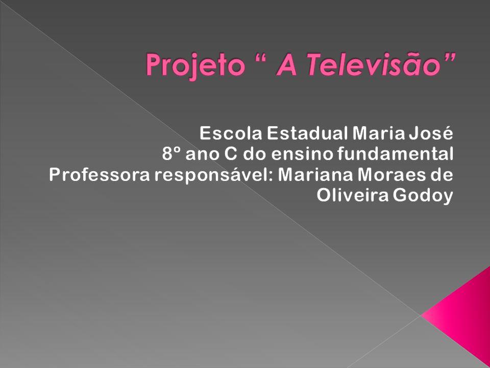 Introdução A Televisão, desde que começou a se transformar no poderoso meio de comunicação que é hoje, passou a ser tema de análises, estudos e discussões.