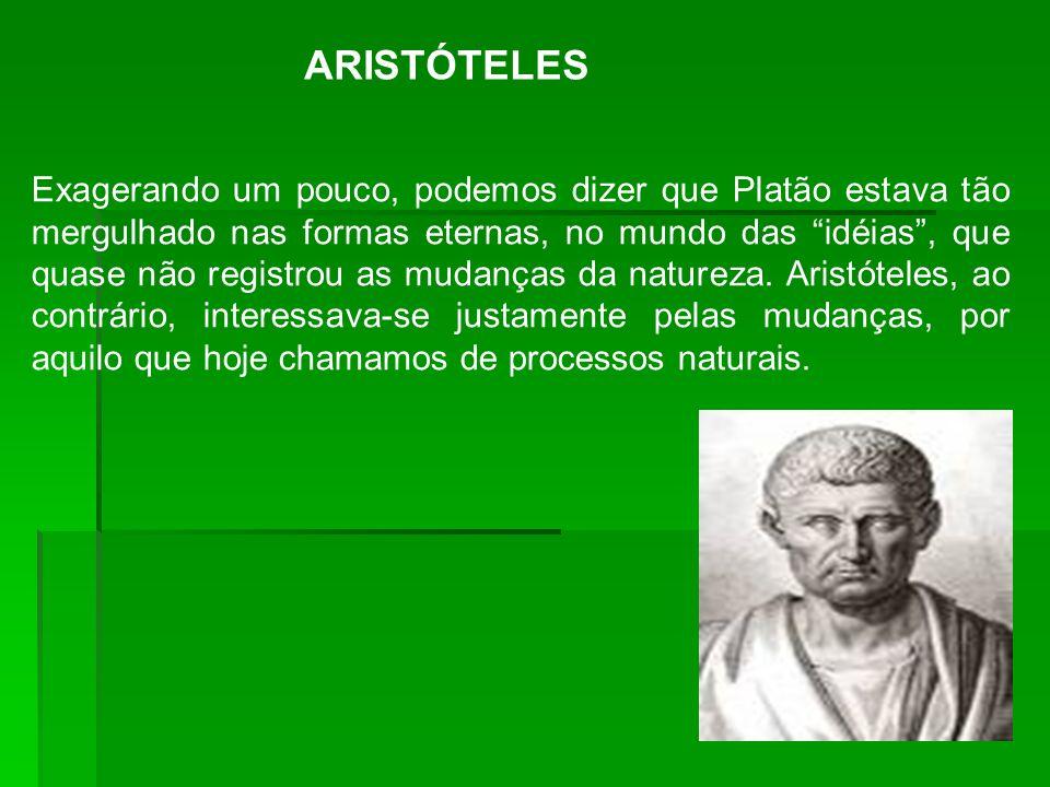 ARISTÓTELES Exagerando um pouco, podemos dizer que Platão estava tão mergulhado nas formas eternas, no mundo das idéias, que quase não registrou as mu