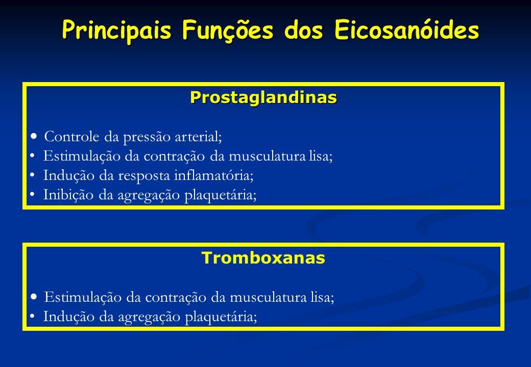 Principais Funções dos Eicosanóides Principais Funções dos Eicosanóides Prostaglandinas Controle da pressão arterial; Estimulação da contração da musc