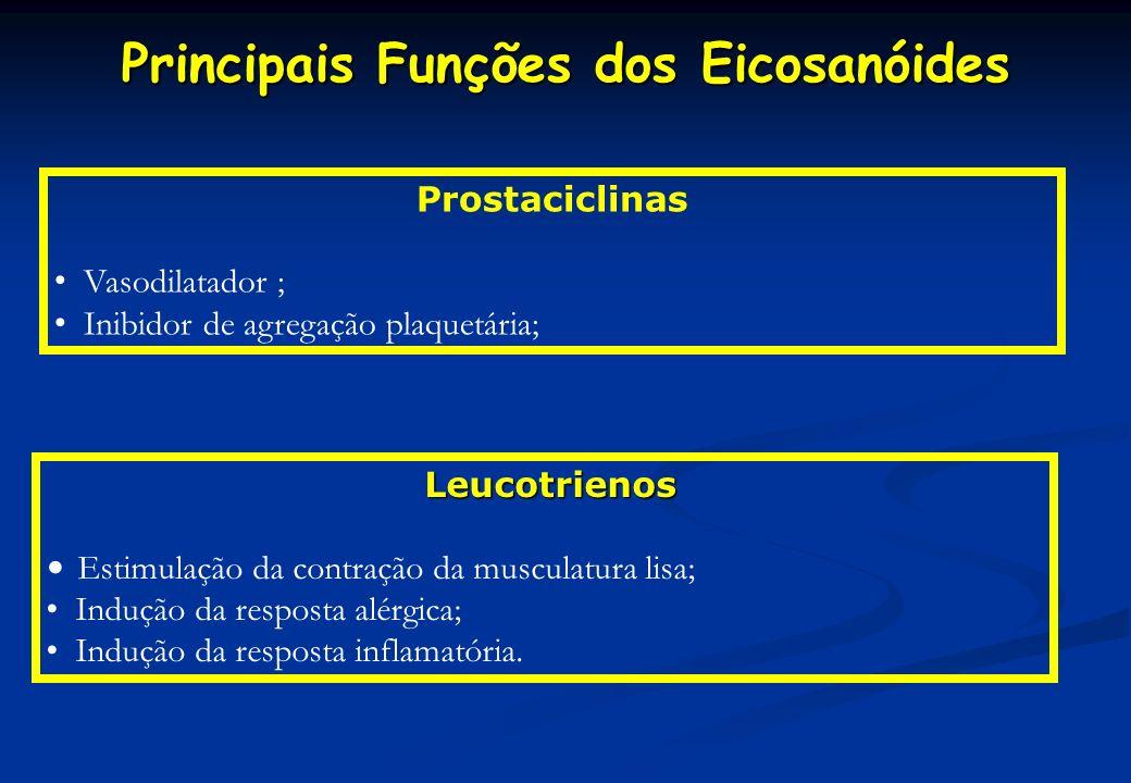 Principais Funções dos Eicosanóides Leucotrienos Estimulação da contração da musculatura lisa; Indução da resposta alérgica; Indução da resposta infla