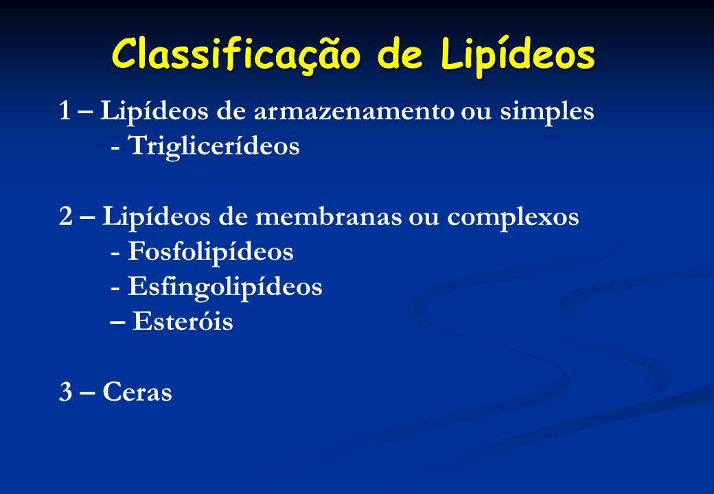 1 – Lipídeos de armazenamento ou simples - Triglicerídeos 2 – Lipídeos de membranas ou complexos - Fosfolipídeos - Esfingolipídeos – Esteróis 3 – Cera