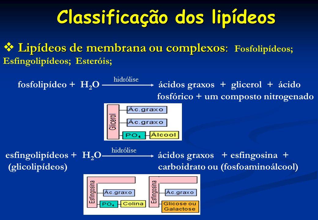 Classificação dos lipídeos Lipídeos de membrana ou complexos: Lipídeos de membrana ou complexos: Fosfolipídeos; Esfingolipídeos; Esteróis; fosfolipíde