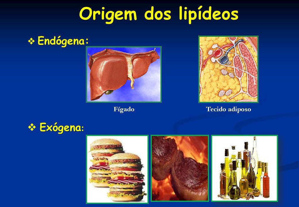 Classificação dos lipídeos Lipídeos de armazenamento ou simples : Triacilglicerol Lipídeos de armazenamento ou simples : Triacilglicerol lipídeos simples + H 2 O ácidos graxos + glicerol hidrólise