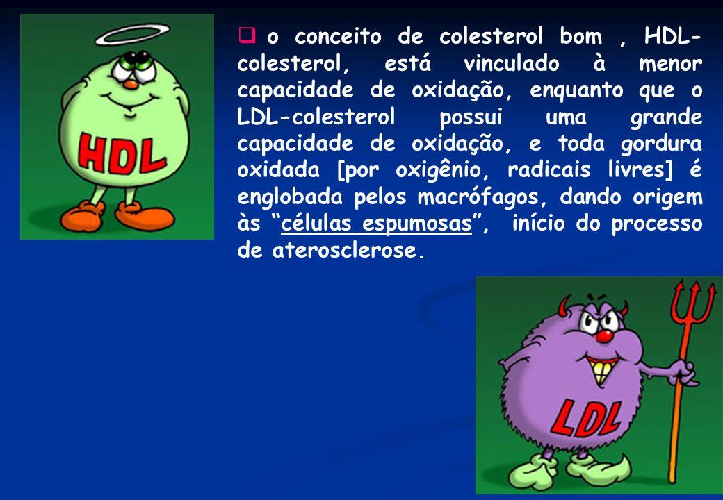 o conceito de colesterol bom, HDL- colesterol, está vinculado à menor capacidade de oxidação, enquanto que o LDL-colesterol possui uma grande capacida