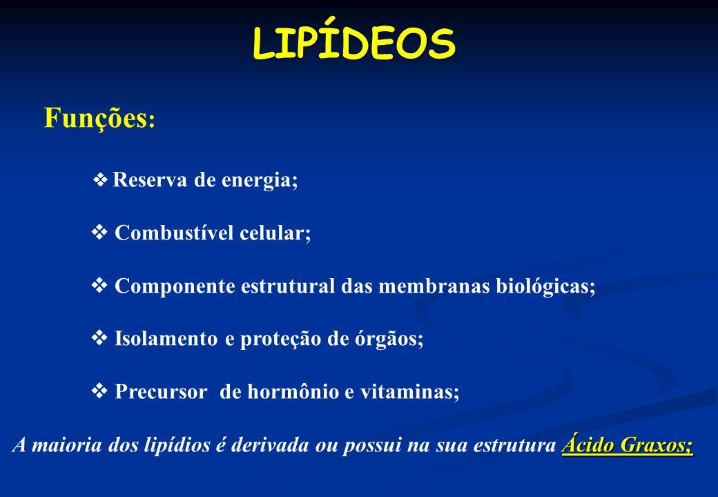 Funções : Reserva de energia; Combustível celular; Componente estrutural das membranas biológicas; Isolamento e proteção de órgãos; Precursor de hormô