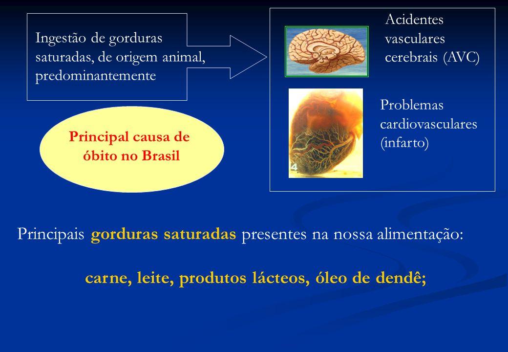 Ingestão de gorduras saturadas, de origem animal, predominantemente Acidentes vasculares cerebrais (AVC) Problemas cardiovasculares (infarto) Principa