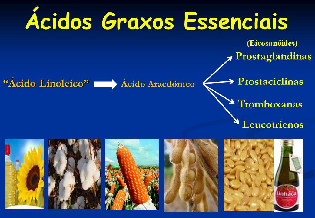 Principais Funções dos Eicosanóides Principais Funções dos Eicosanóides Prostaglandinas Controle da pressão arterial; Estimulação da contração da musculatura lisa; Indução da resposta inflamatória; Inibição da agregação plaquetária; Tromboxanas Estimulação da contração da musculatura lisa; Indução da agregação plaquetária;