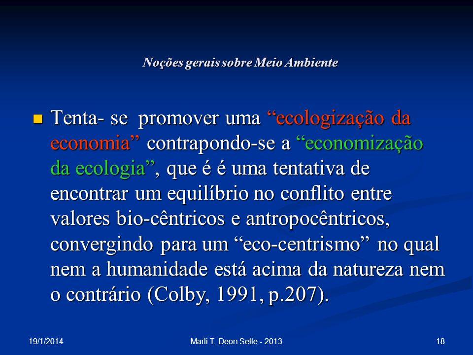 19/1/2014 18Marli T. Deon Sette - 2013 Noções gerais sobre Meio Ambiente Tenta- se promover uma ecologização da economia contrapondo-se a economização