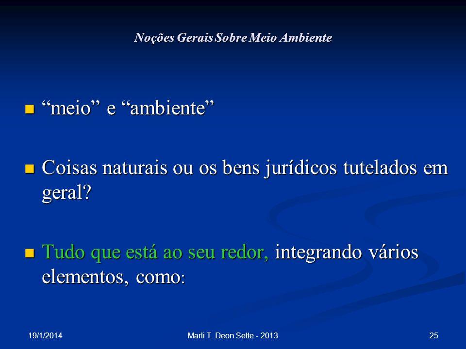 19/1/2014 25Marli T. Deon Sette - 2013 Noções Gerais Sobre Meio Ambiente meio e ambiente meio e ambiente Coisas naturais ou os bens jurídicos tutelado