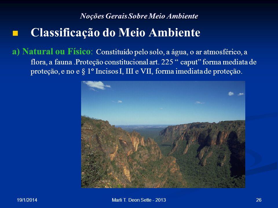 19/1/2014 26Marli T. Deon Sette - 2013 Noções Gerais Sobre Meio Ambiente Classificação do Meio Ambiente a) Natural ou Físico: Constituído pelo solo, a
