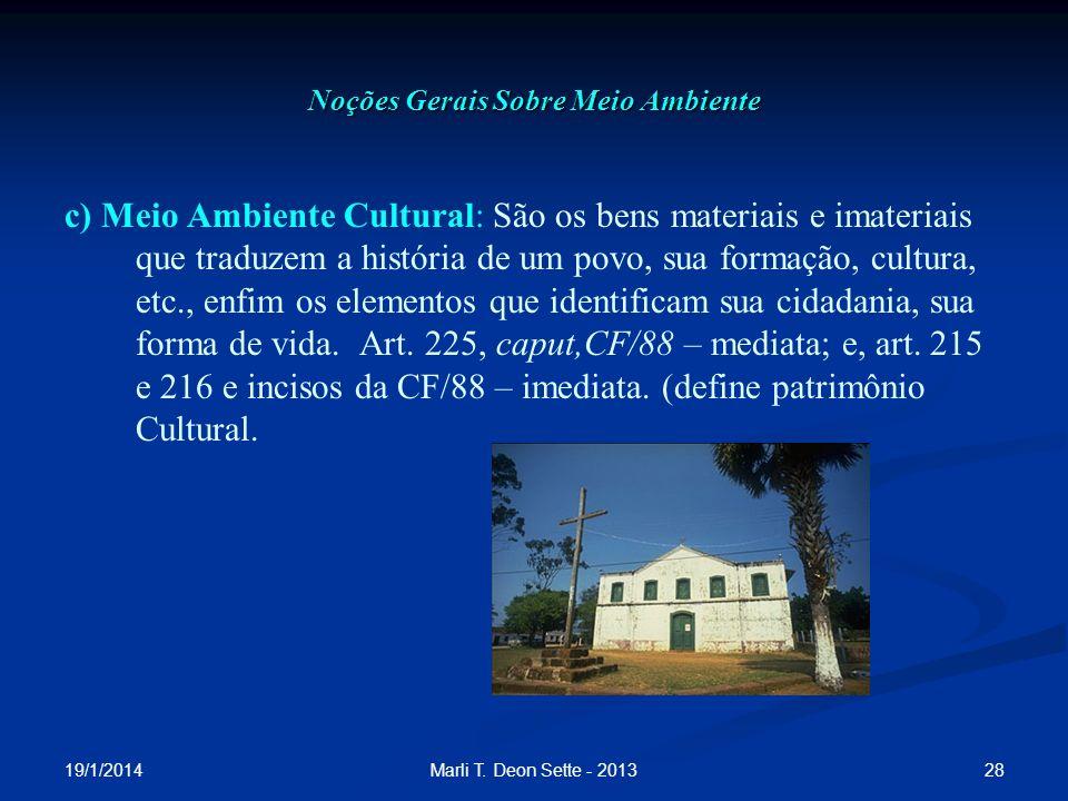 19/1/2014 28Marli T. Deon Sette - 2013 Noções Gerais Sobre Meio Ambiente c) Meio Ambiente Cultural: São os bens materiais e imateriais que traduzem a