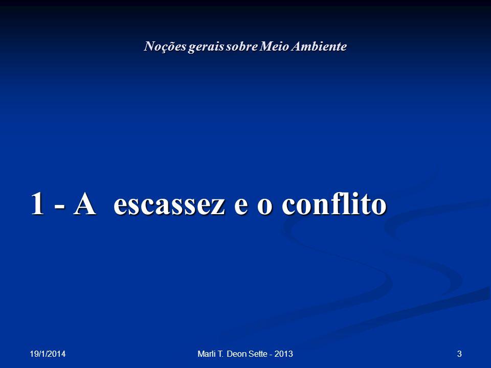 19/1/2014 3Marli T. Deon Sette - 2013 Noções gerais sobre Meio Ambiente 1 - A escassez e o conflito