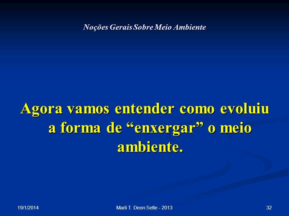 19/1/2014 32Marli T. Deon Sette - 2013 Noções Gerais Sobre Meio Ambiente Agora vamos entender como evoluiu a forma de enxergar o meio ambiente.