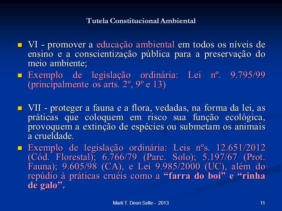 11Marli T. Deon Sette - 2013 Tutela Constitucional Ambiental VI - promover a educação ambiental em todos os níveis de ensino e a conscientização públi