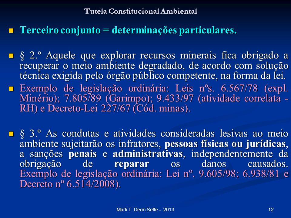 12Marli T. Deon Sette - 2013 Tutela Constitucional Ambiental Terceiro conjunto = determinações particulares. Terceiro conjunto = determinações particu