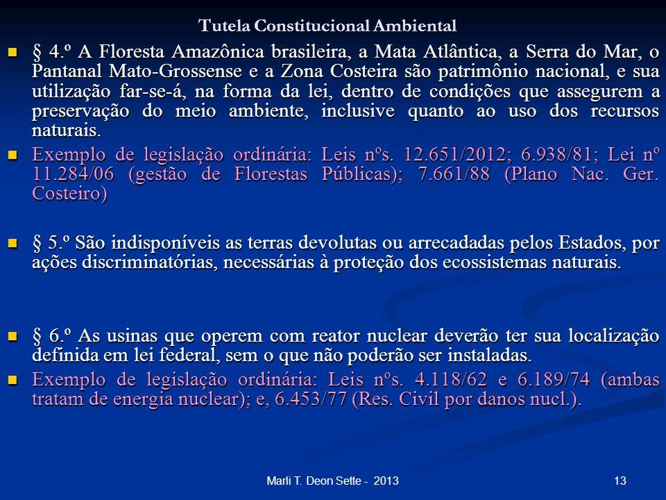13Marli T. Deon Sette - 2013 Tutela Constitucional Ambiental § 4.º A Floresta Amazônica brasileira, a Mata Atlântica, a Serra do Mar, o Pantanal Mato-