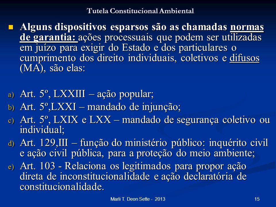 15Marli T. Deon Sette - 2013 Tutela Constitucional Ambiental Alguns dispositivos esparsos são as chamadas normas de garantia: ações processuais que po