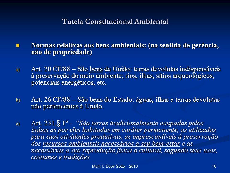 16Marli T. Deon Sette - 2013 Tutela Constitucional Ambiental Normas relativas aos bens ambientais: (no sentido de gerência, não de propriedade) Normas