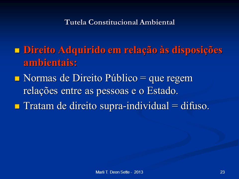 23Marli T. Deon Sette - 2013 Tutela Constitucional Ambiental Direito Adquirido em relação às disposições ambientais: Direito Adquirido em relação às d