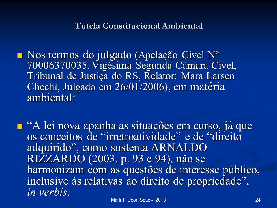 24Marli T. Deon Sette - 2013 Tutela Constitucional Ambiental Nos termos do julgado (Apelação Cível Nº 70006370035, Vigésima Segunda Câmara Cível, Trib