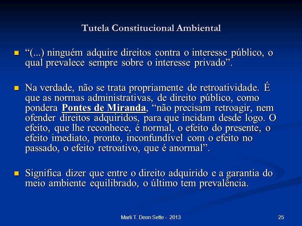 25Marli T. Deon Sette - 2013 Tutela Constitucional Ambiental (...) ninguém adquire direitos contra o interesse público, o qual prevalece sempre sobre