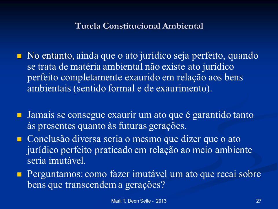 27Marli T. Deon Sette - 2013 Tutela Constitucional Ambiental No entanto, No entanto, ainda que o ato jurídico seja perfeito, quando se trata de matéri