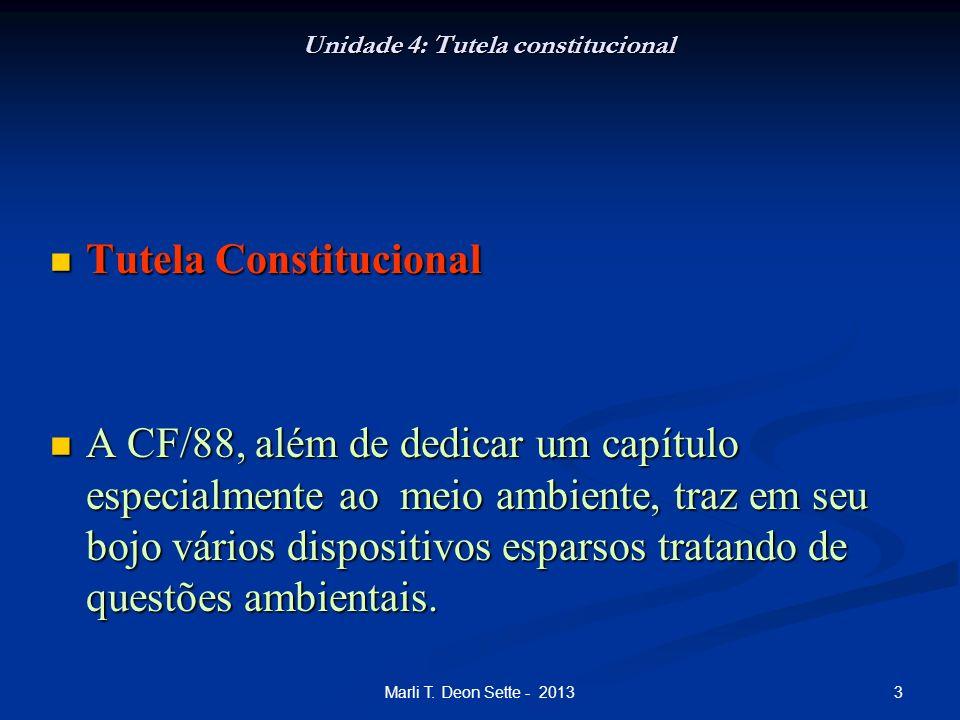 3Marli T. Deon Sette - 2013 Unidade 4: Tutela constitucional Tutela Constitucional Tutela Constitucional A CF/88, além de dedicar um capítulo especial