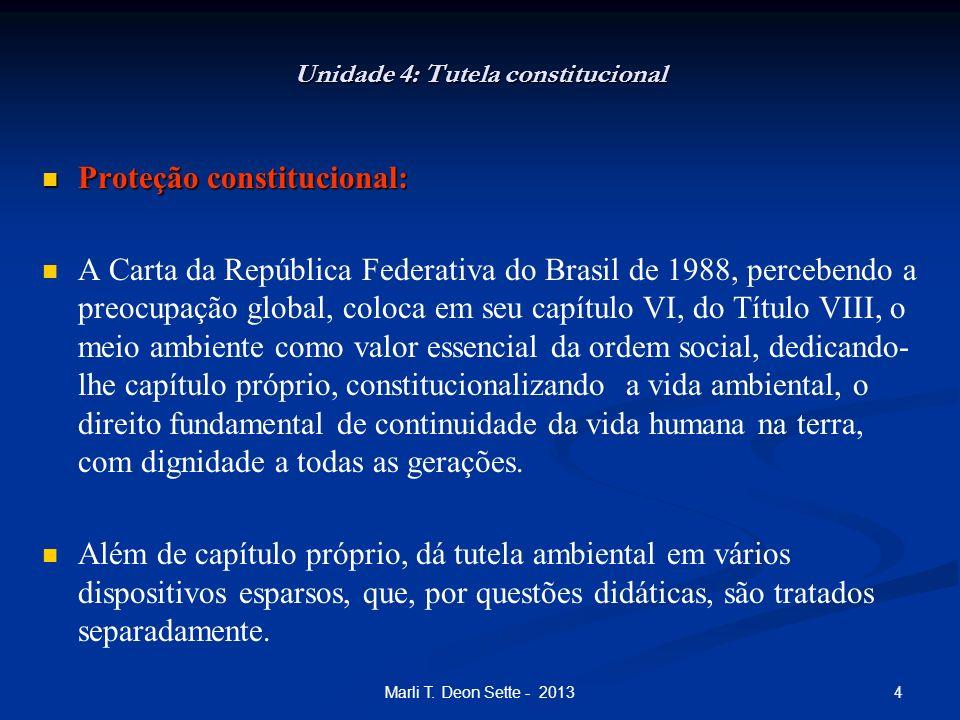 4Marli T. Deon Sette - 2013 Unidade 4: Tutela constitucional Proteção constitucional: Proteção constitucional: A Carta da República Federativa do Bras