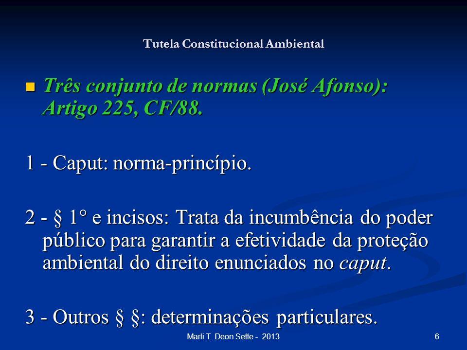 6Marli T. Deon Sette - 2013 Tutela Constitucional Ambiental Três conjunto de normas (José Afonso): Artigo 225, CF/88. Três conjunto de normas (José Af