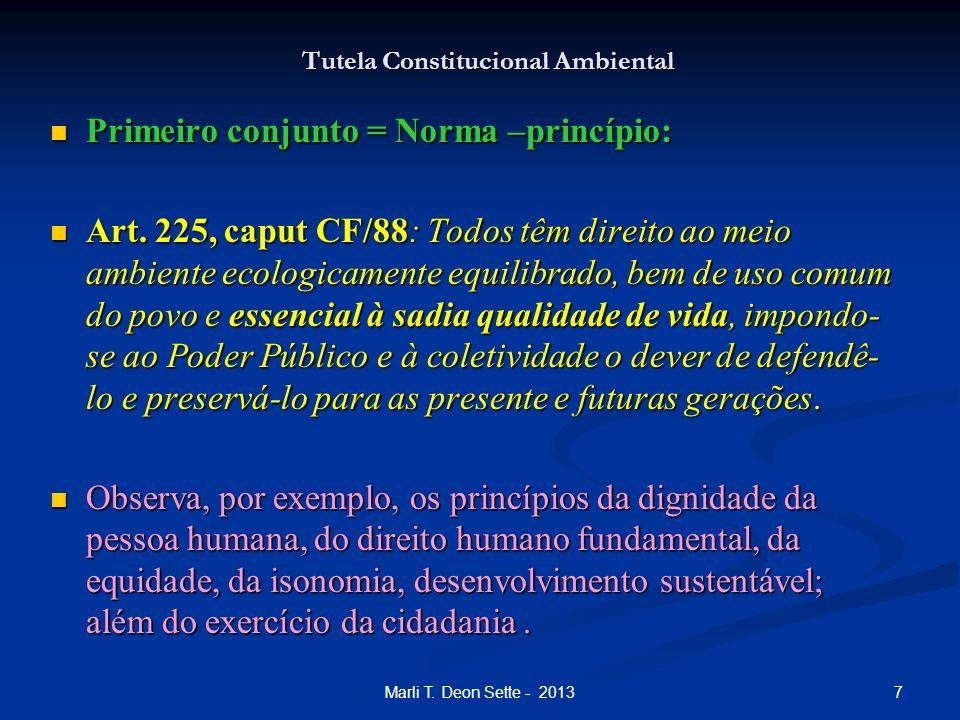 7Marli T. Deon Sette - 2013 Tutela Constitucional Ambiental Primeiro conjunto = Norma –princípio: Primeiro conjunto = Norma –princípio: Art. 225, capu