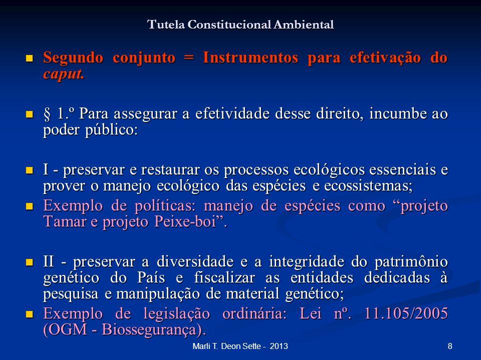 8Marli T. Deon Sette - 2013 Tutela Constitucional Ambiental Segundo conjunto = Instrumentos para efetivação do caput. Segundo conjunto = Instrumentos