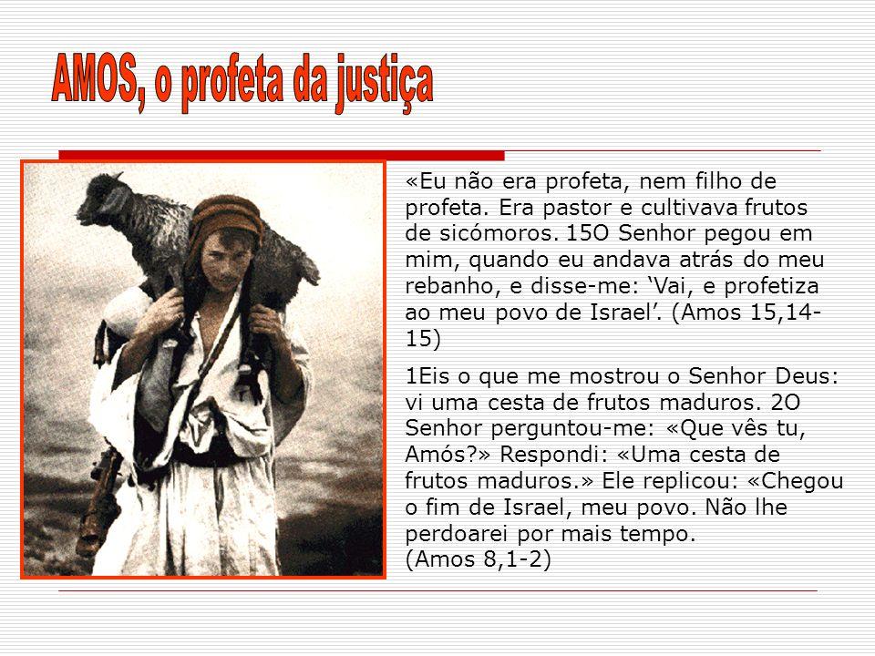 «Eu não era profeta, nem filho de profeta. Era pastor e cultivava frutos de sicómoros. 15O Senhor pegou em mim, quando eu andava atrás do meu rebanho,