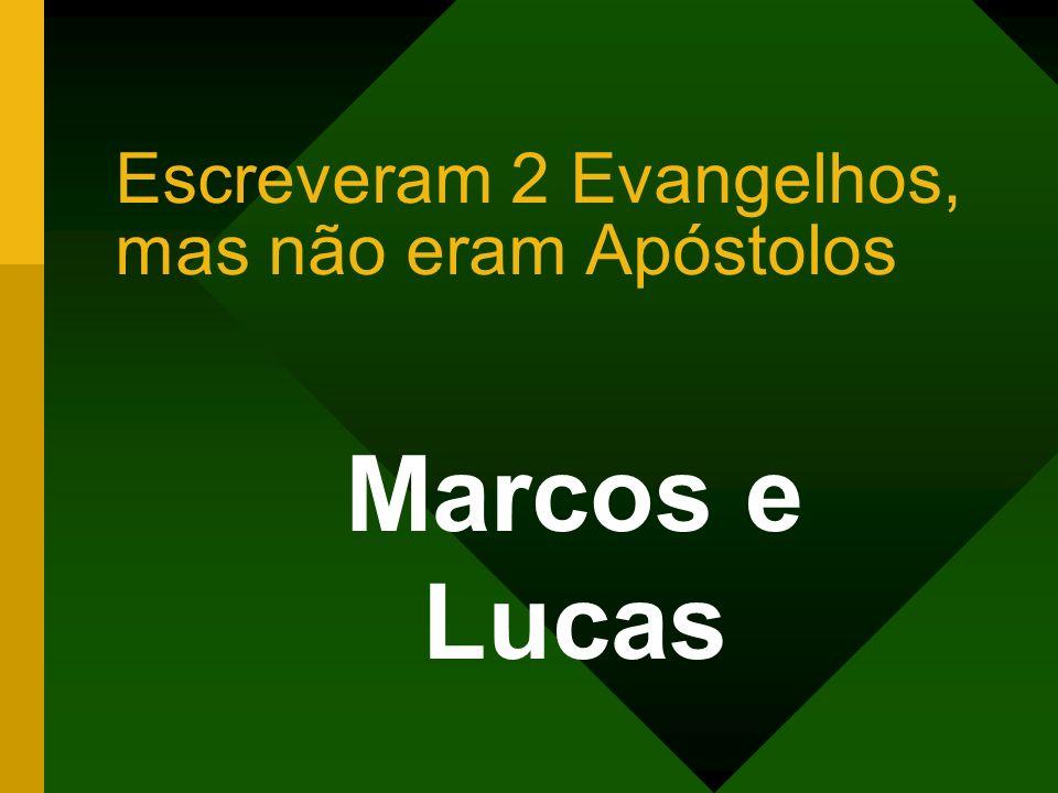 Escreveram 2 Evangelhos, mas não eram Apóstolos Marcos e Lucas