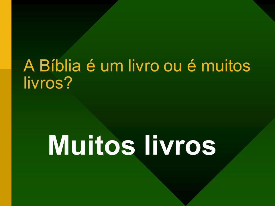 A Bíblia é um livro ou é muitos livros? Muitos livros