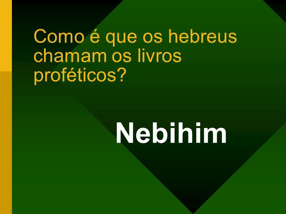 Como é que os hebreus chamam os livros proféticos? Nebihim