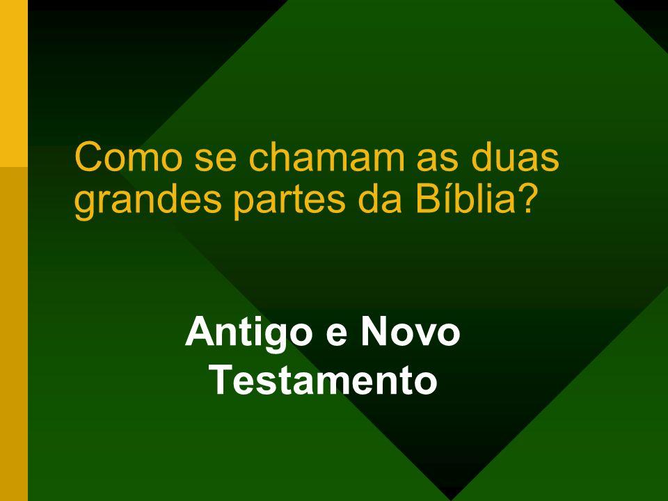 Como se chamam as duas grandes partes da Bíblia? Antigo e Novo Testamento