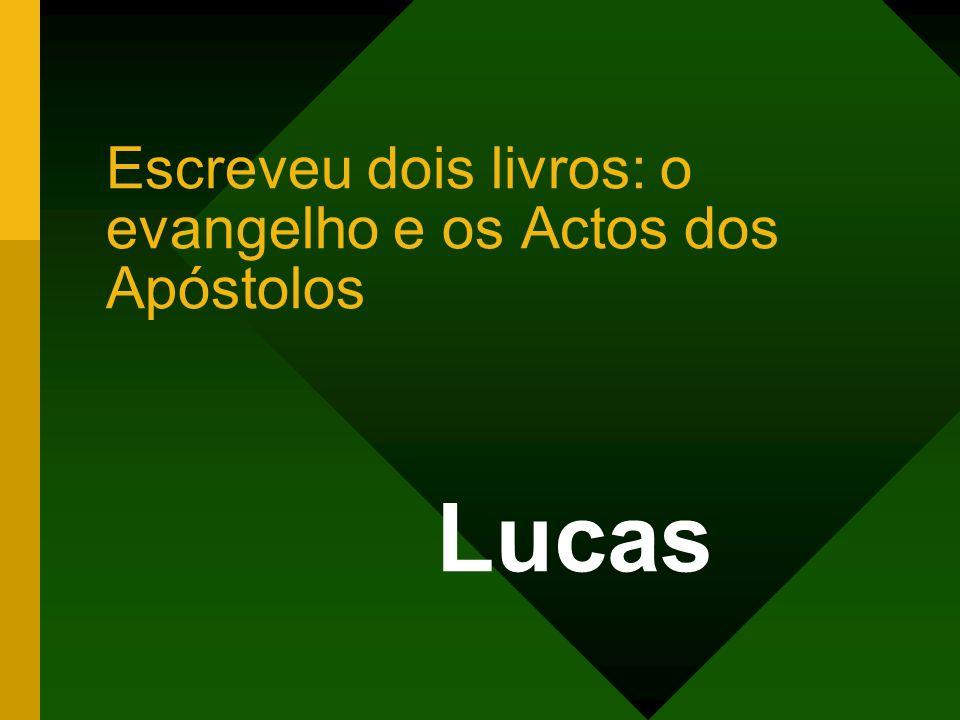 Escreveu dois livros: o evangelho e os Actos dos Apóstolos