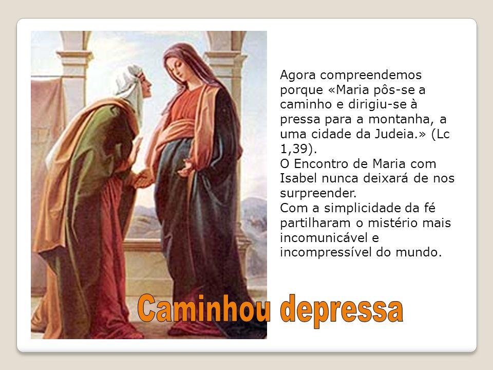 Agora compreendemos porque «Maria pôs-se a caminho e dirigiu-se à pressa para a montanha, a uma cidade da Judeia.» (Lc 1,39). O Encontro de Maria com