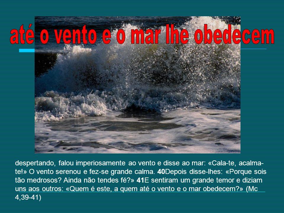 despertando, falou imperiosamente ao vento e disse ao mar: «Cala-te, acalma- te!» O vento serenou e fez-se grande calma. 40Depois disse-lhes: «Porque