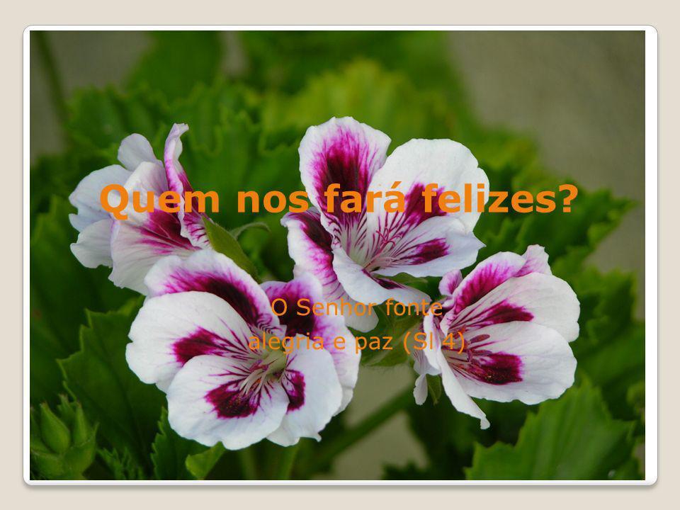 Quem nos fará felizes? O Senhor fonte alegria e paz (Sl 4)