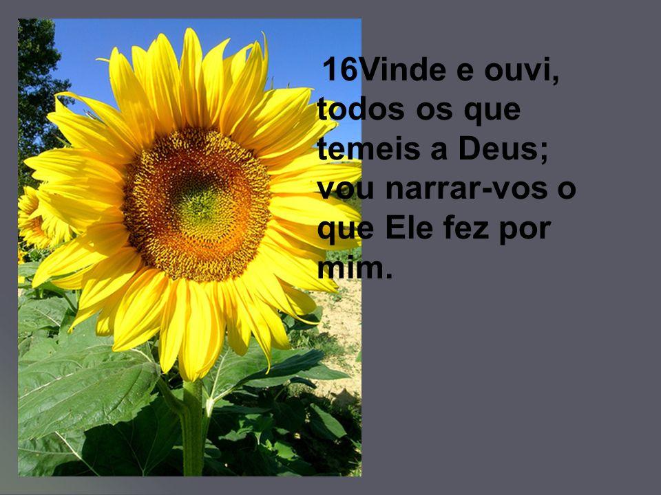 16Vinde e ouvi, todos os que temeis a Deus; vou narrar-vos o que Ele fez por mim.