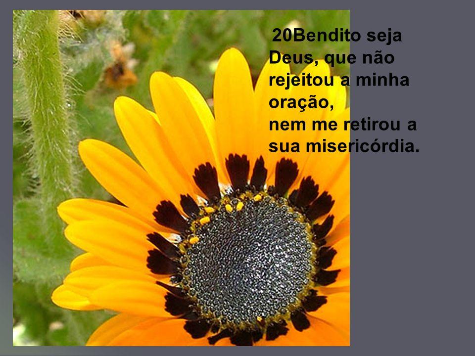 20Bendito seja Deus, que não rejeitou a minha oração, nem me retirou a sua misericórdia.