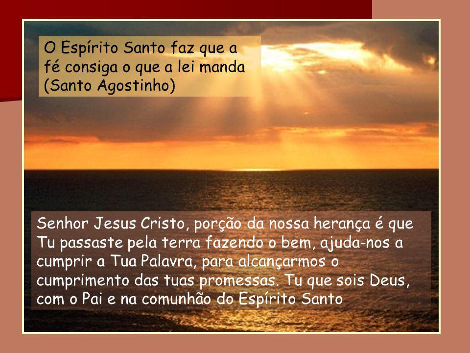 Senhor Jesus Cristo, porção da nossa herança é que Tu passaste pela terra fazendo o bem, ajuda-nos a cumprir a Tua Palavra, para alcançarmos o cumprim