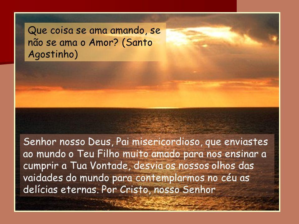 Senhor nosso Deus, Pai misericordioso, que enviastes ao mundo o Teu Filho muito amado para nos ensinar a cumprir a Tua Vontade, desvia os nossos olhos