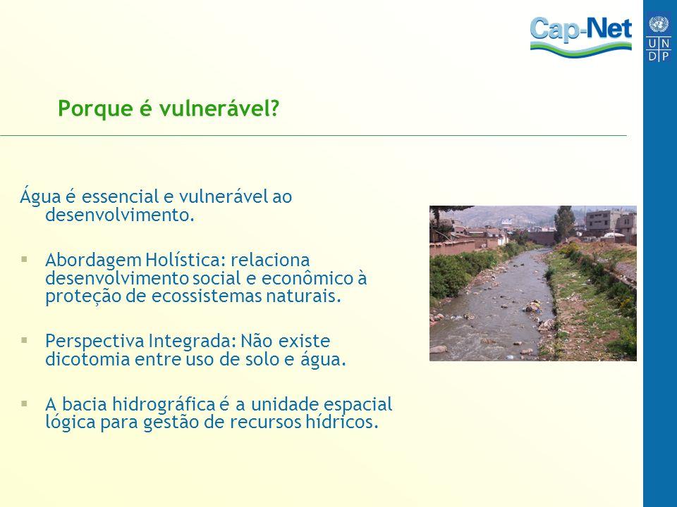 Porque é vulnerável? Água é essencial e vulnerável ao desenvolvimento. Abordagem Holística: relaciona desenvolvimento social e econômico à proteção de