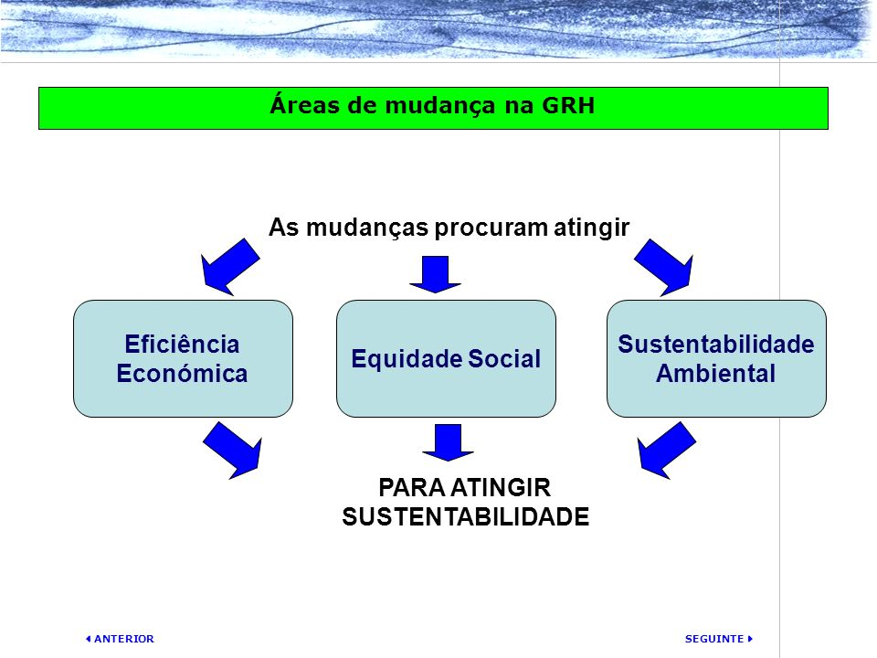 SEGUINTE ANTERIOR Áreas de mudança na GRH Sustentabilidade Ambiental Eficiência Económica Equidade Social As mudanças procuram atingir PARA ATINGIR SU