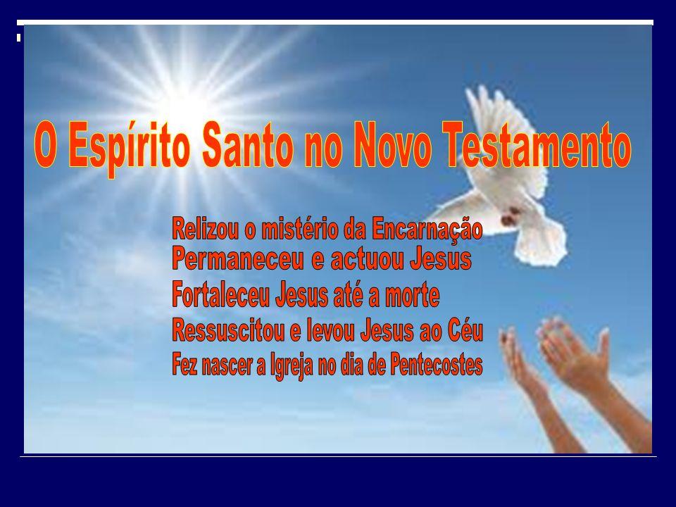 «O Espírito Santo virá sobre ti e a força do Altíssimo estenderá sobre ti a sua sombra.